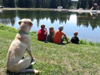 <h2>Disney Brook </h2><p>Relaxing summer day with best friends watching for fish in the pond.</p>